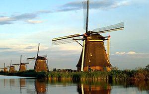 Holland fordítás