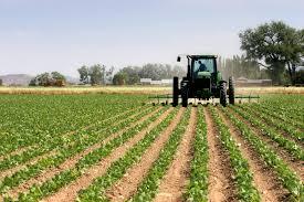 Mezőgazdasági szakfordítás